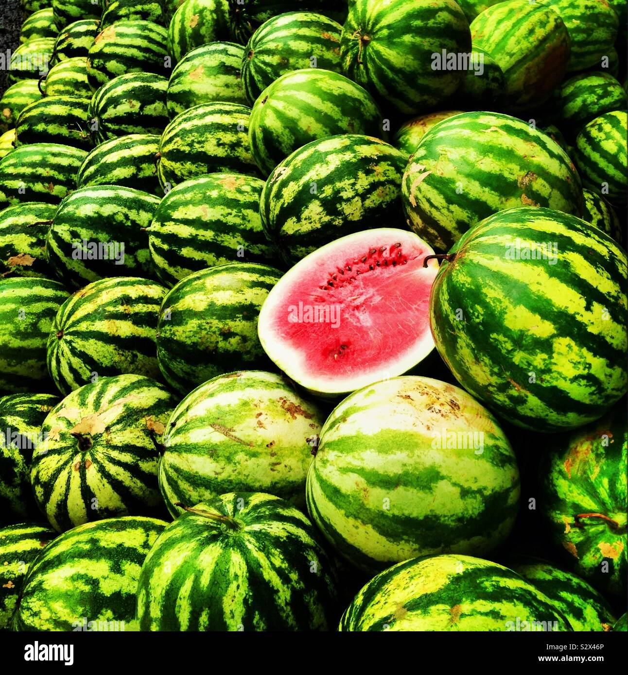 watermelons in a street market Stock Photo