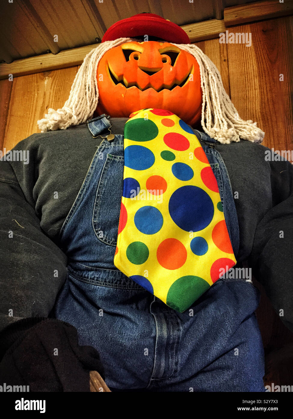 Halloween scarecrow with a carved smiling pumpkin head and a mop for his hair. He is wearing overalls and has a polka dot tie. Stock Photo