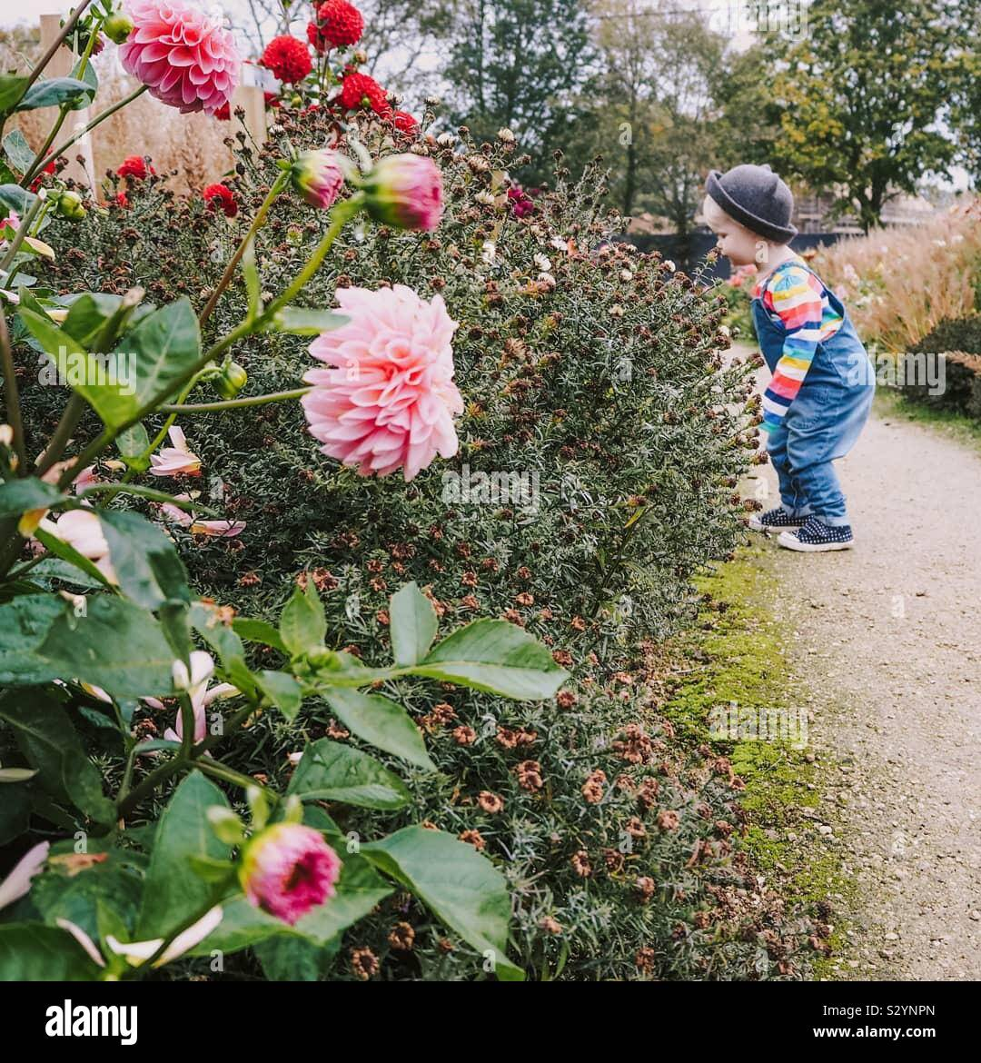 Little girl wearing a hat smelling flowers Stock Photo