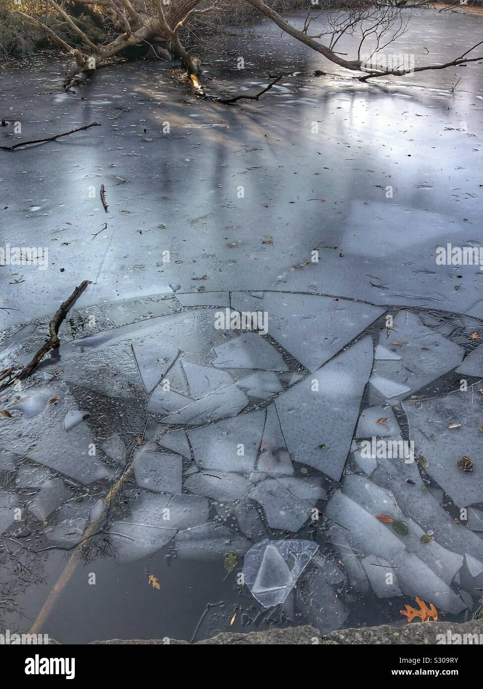 Broken ice on a pond Stock Photo 311638319 - Alamy