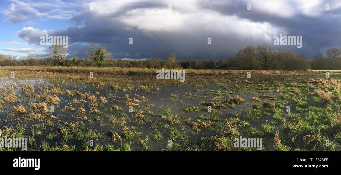 Flooded meadow at Tednambury in Hertfordshire. River Stort valley Stock Photo