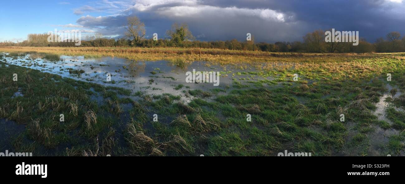 Panoramic of flooded fields in the Stort Valley at Tednambury near Bishops Stortford Hertfordshire Stock Photo