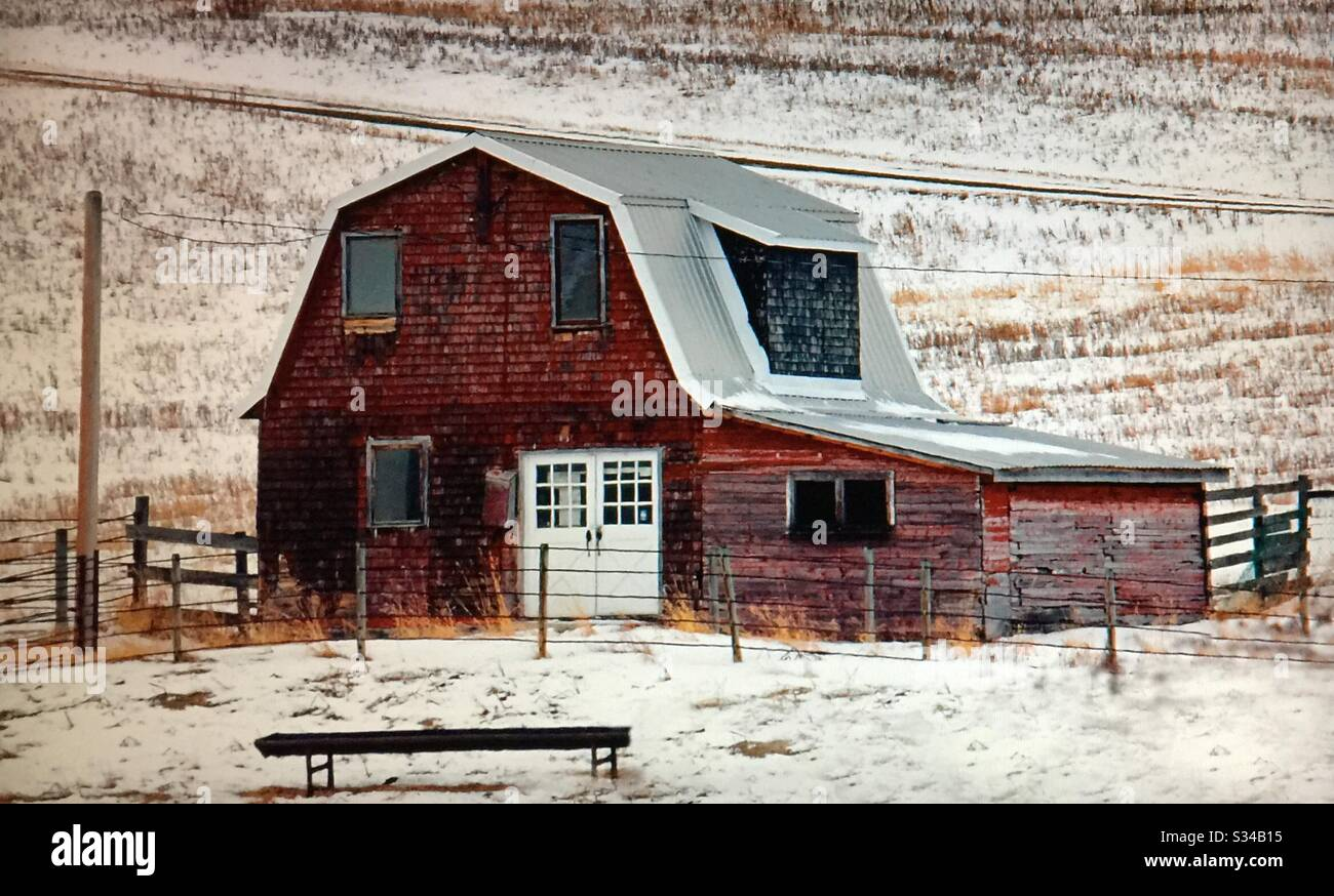 Farmyard And Old Red Hip Roof Barn With A Lean To Alberta Canada Stock Photo Alamy