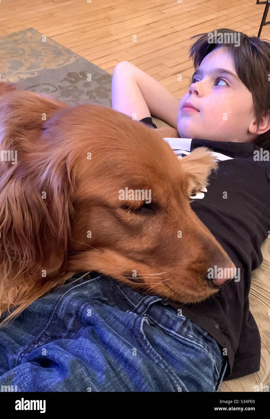 A dog's best friend Stock Photo