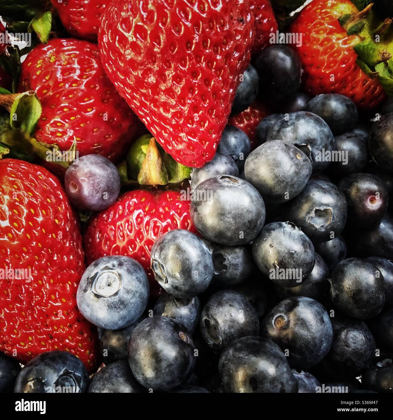 Berries! Stock Photo