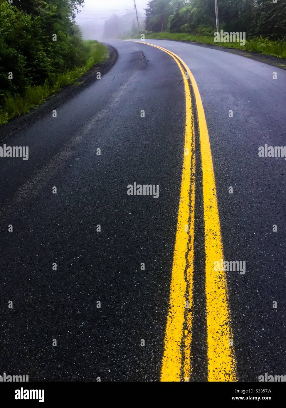 Road disappearing into the mist, Canada. Concepts: towards, lost horizon, solid lines, non-linear Stock Photo