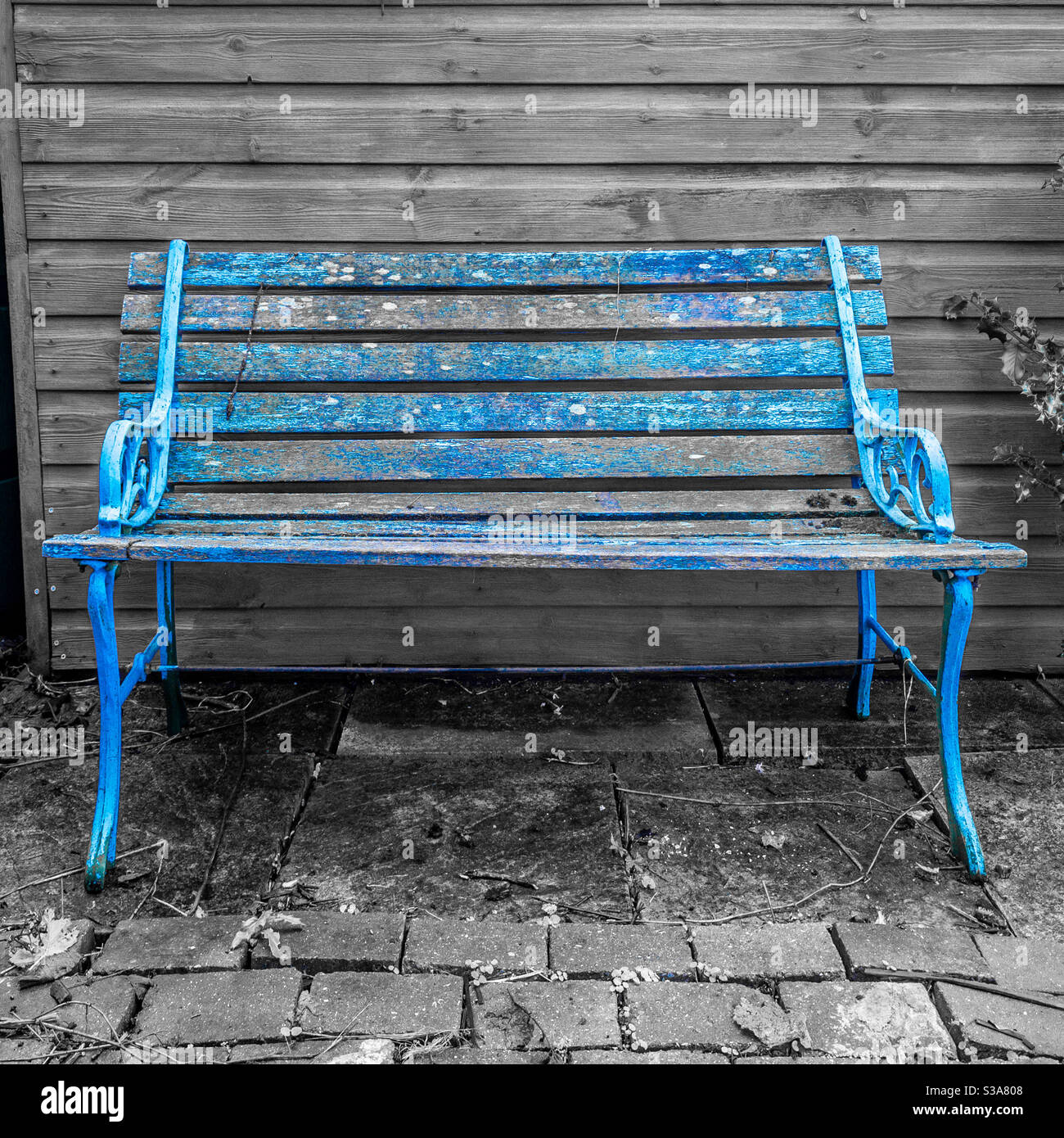Picture of: Old Wood And Cast Iron Garden Bench With Flaking Blue Paint Alongside Shed Stock Photo Alamy