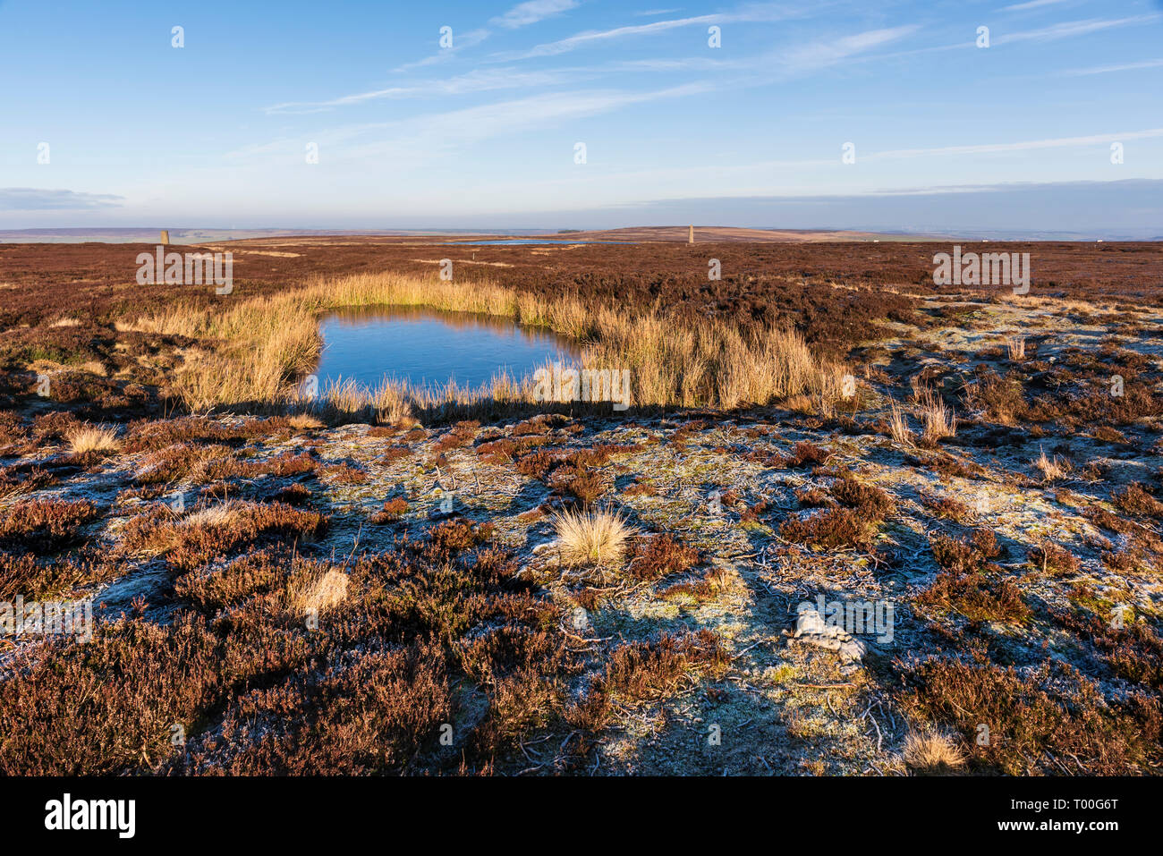 On the remote landscape of the Durham Moors in the North Pennines a peat pond in boggy upland heather moorland - Stock Image