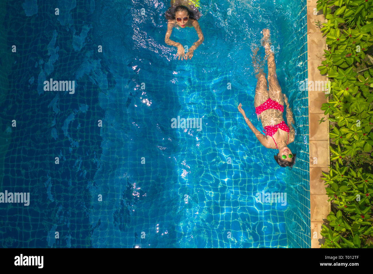 aerial top view above swimming pool. woman in yellow bikini and woman in red bikini are swimming  in villa pool - Stock Image