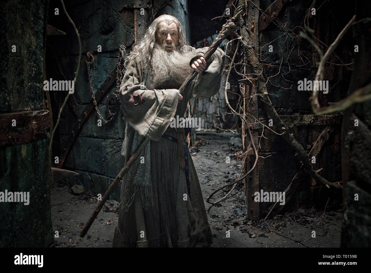 Ian Mckellen The Hobbit The Desolation Of Smaug 2013 Stock Photo Alamy