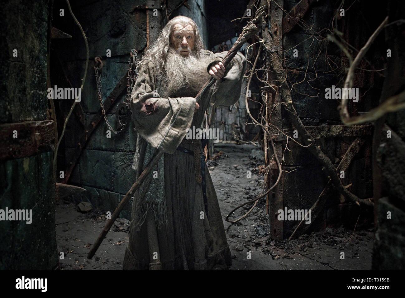 Ian Mckellen The Hobbit The Desolation Of Smaug 2013