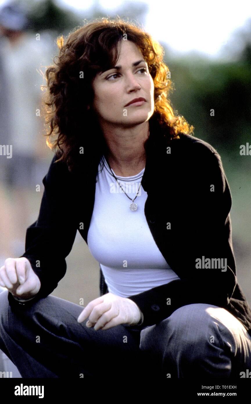 Amy Laughlin Csi Miami delaney stock photos & delaney stock images - alamy