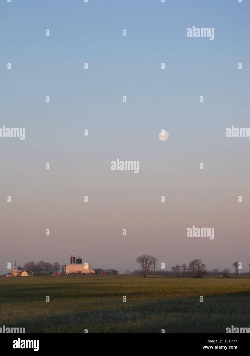 Morning moonset over Illinois dairy farm - Stock Image
