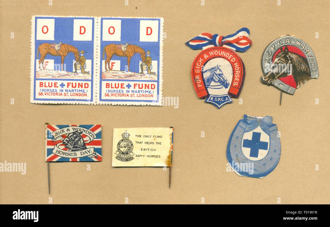 World War One charity flags for sick and wounded horses - Stock Image