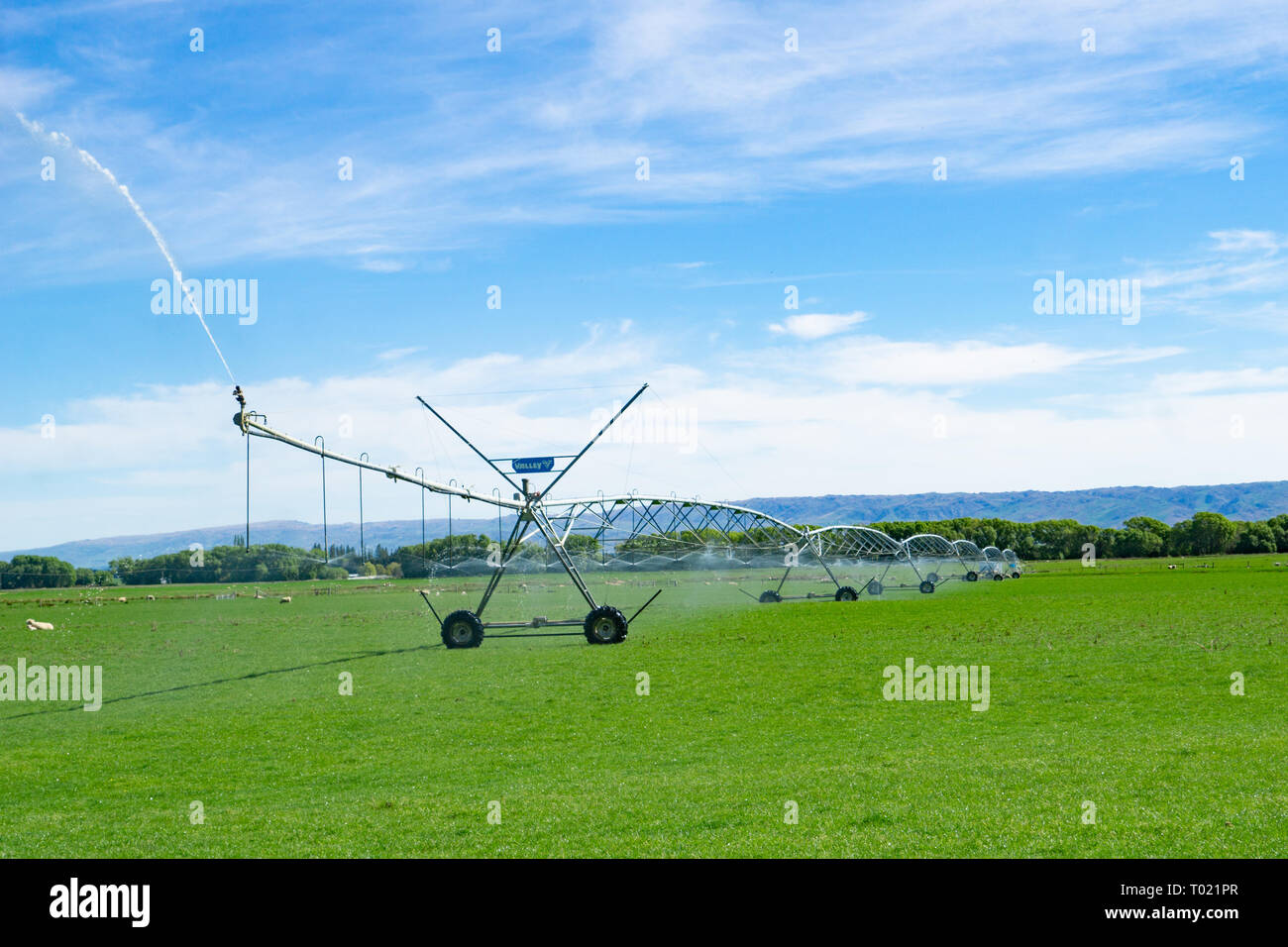 Large centre pivot irrigation system running on a farm in Central Otago, New Zealand providing water distribution for farmland pasture management - Stock Image