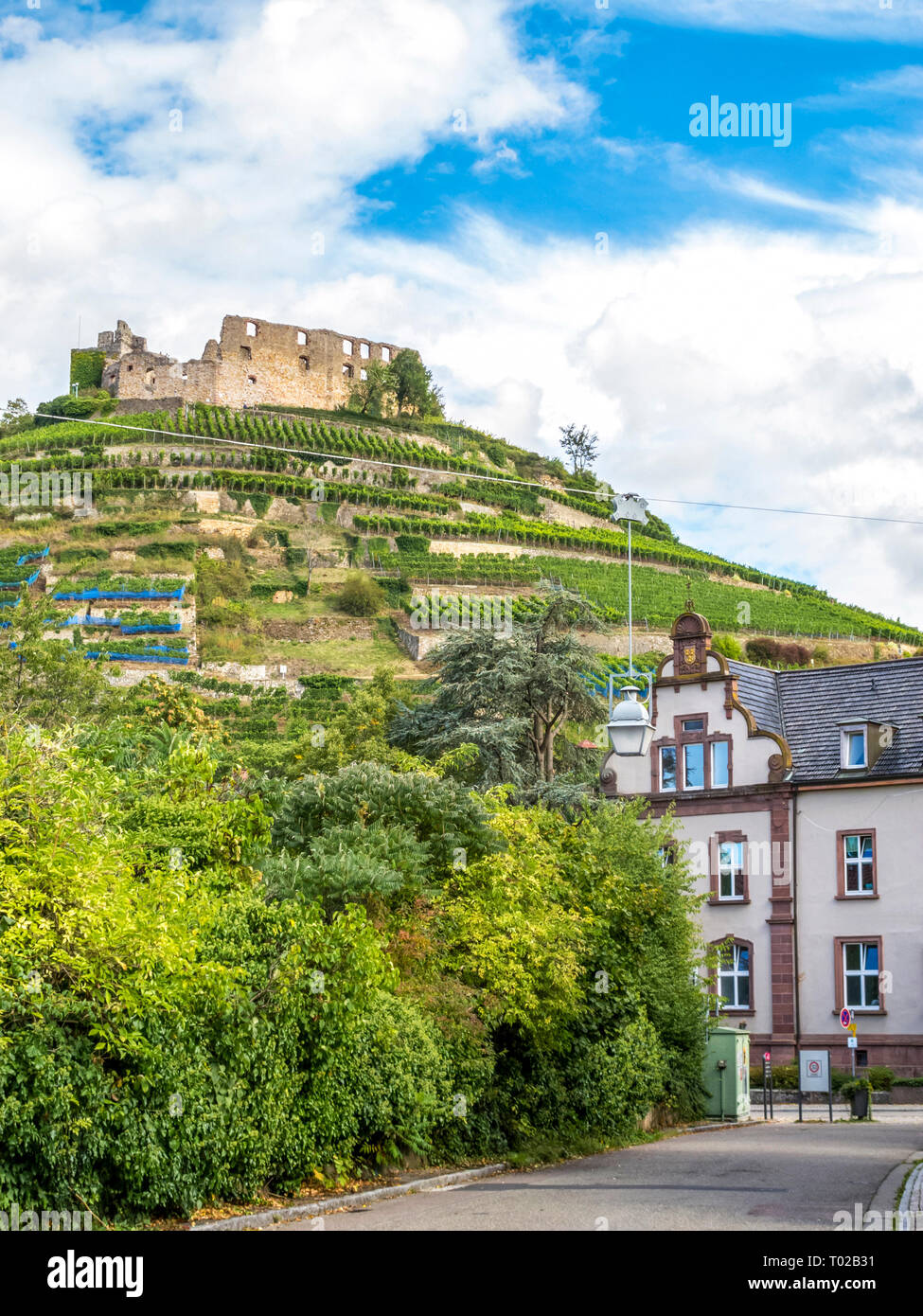 Staufen im Breisgau view of the old castle ruins and vineyard hills, Baden-Wuerttemberg, southwest Germany - Stock Image