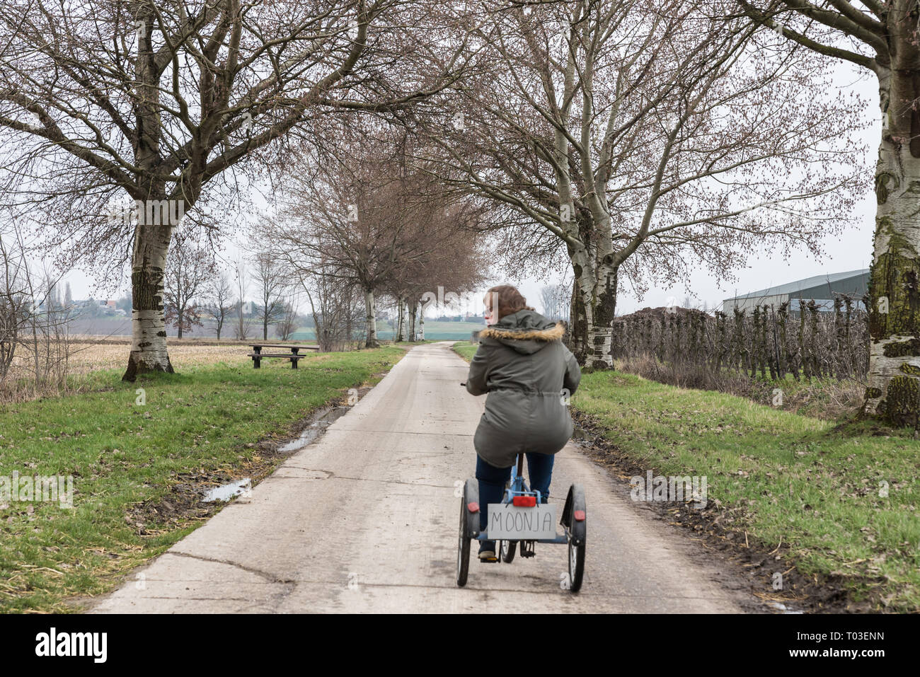 Hakendover, Flanders / Belgium - 03 02 2019: Young white woman with Down Syndrome drive a tricycle at the Suikerroute the Sugar bicycle trail at the B Stock Photo