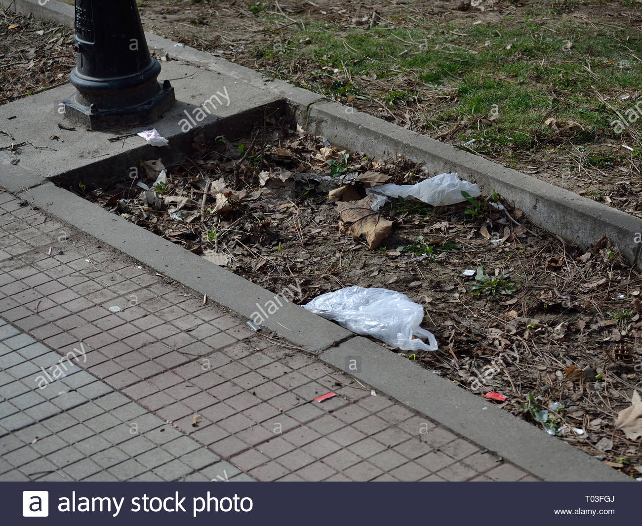 Plastic bags thrown on the street - Stock Image