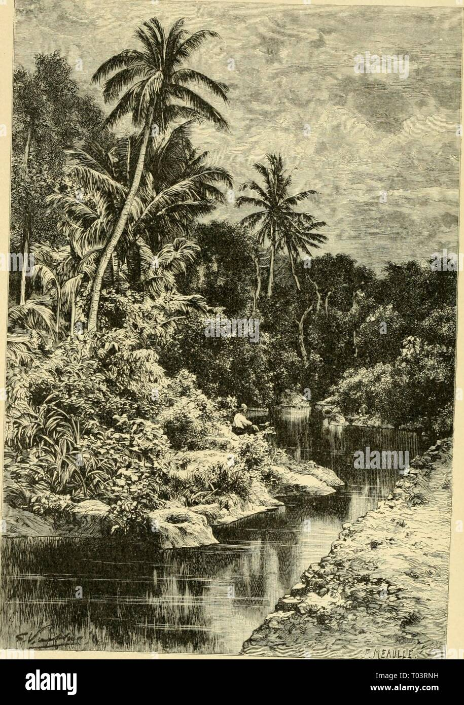 The earth and its inhabitants .. . earthitsinhabita00recl Year: 1890  212 AUSTEALASIA. floras and faunas. The side facing Australia abounds most in forms characteristic Fig. 88.—View taken in a Foeest neae Kupang, Timoe.    of that continent, while the opposite side belongs more to the animal and - Stock Image