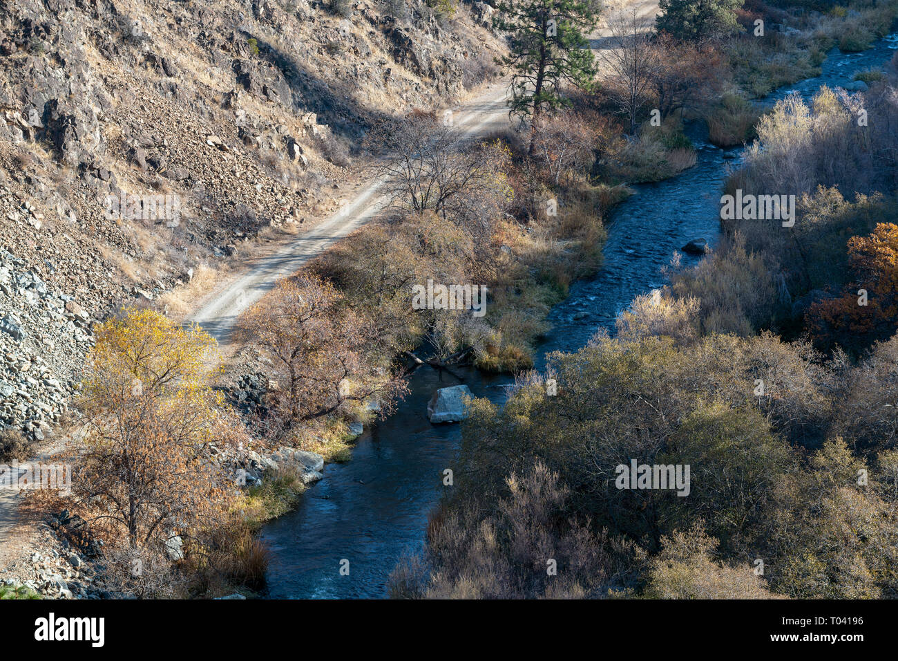 A dirt road next to the Shasta River in California, USA - Stock Image