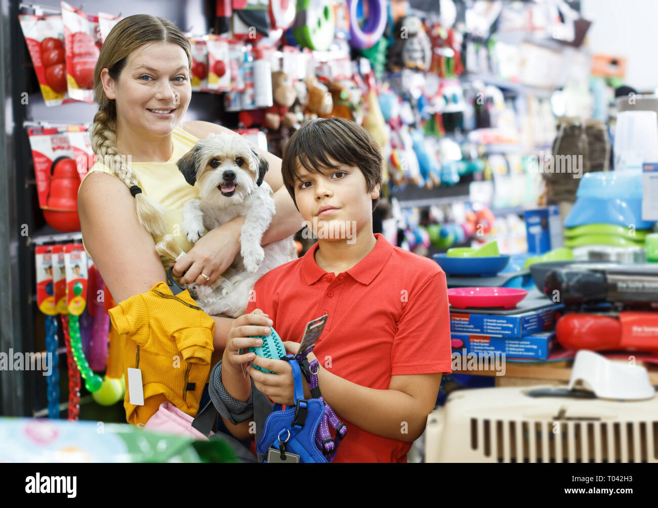 Woman with positive preteen boy and  little dog choosing accessories  for pet shop - Stock Image