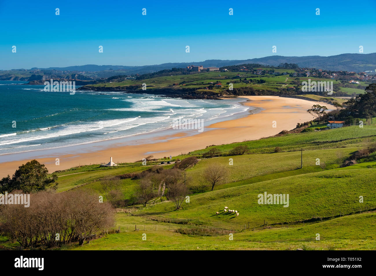 Meadow of fresh green grass. Oyambre beach, Comillas. Cantabrian Sea. Cantabria Spain. Europe Stock Photo