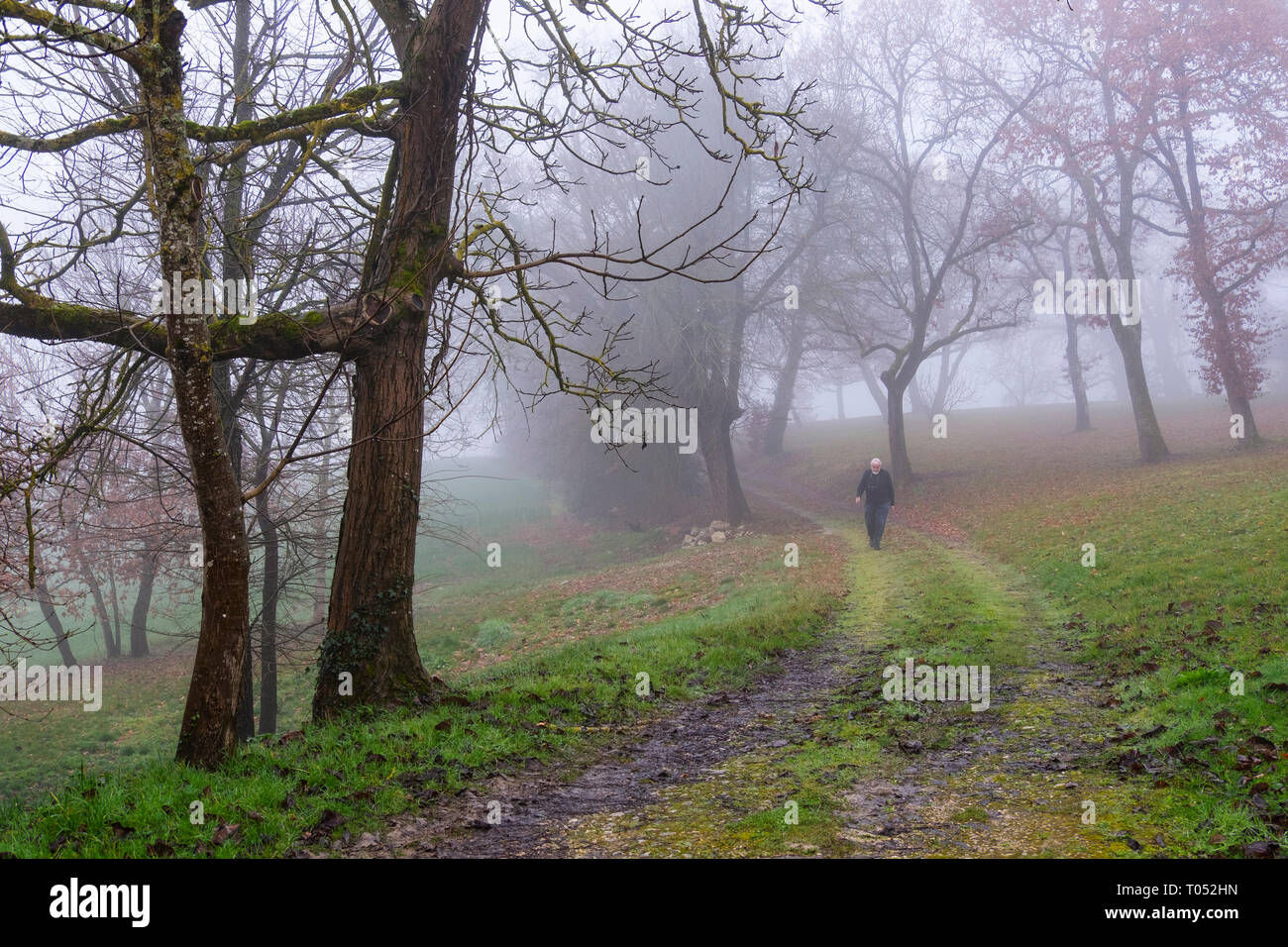 Man walking in the fog. Winter morning at rural house. Gers, Midi-Pyrenees, France. Europe - Stock Image