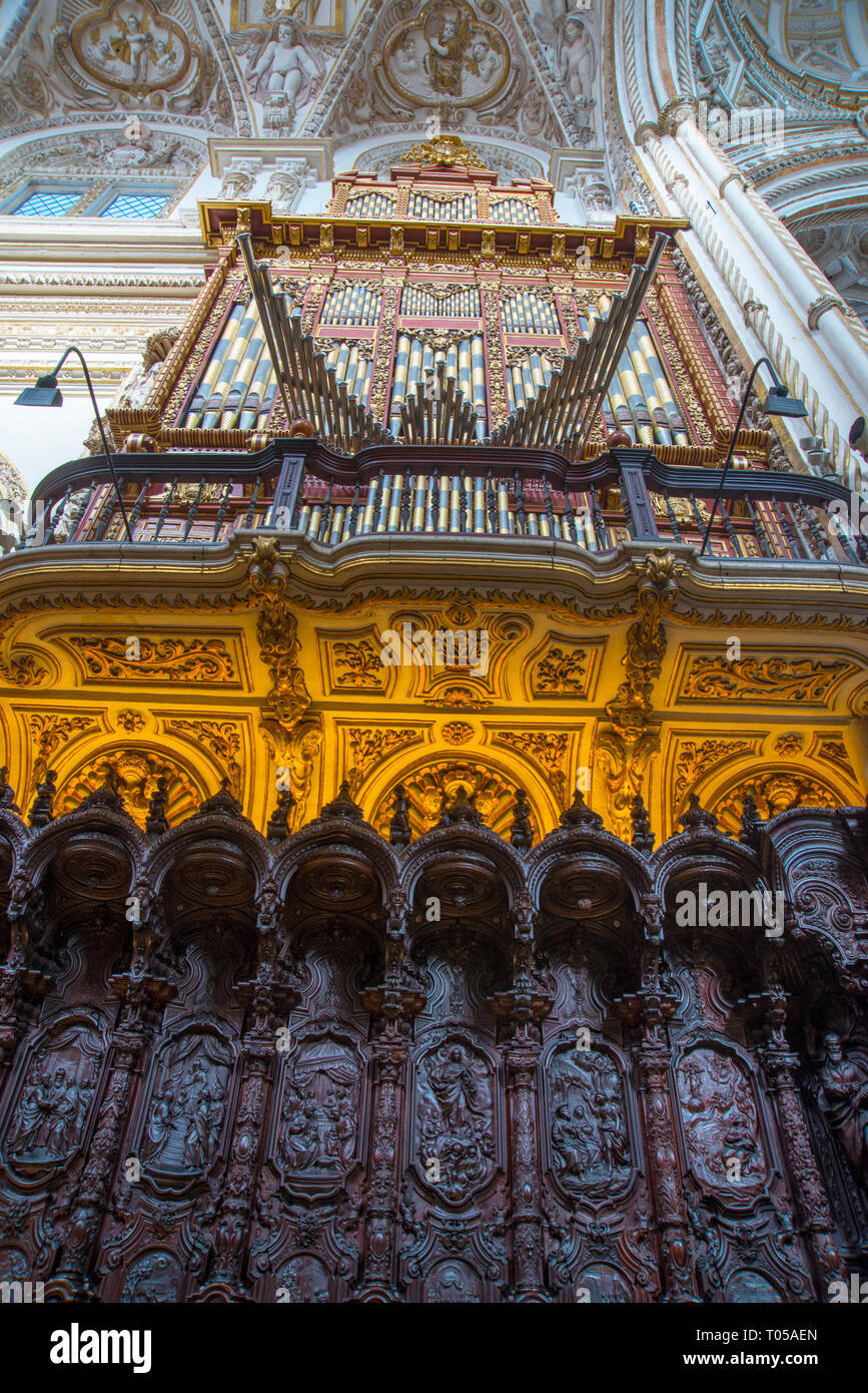 Choir stalls and organ of the cathedral. Cordoba, Spain. - Stock Image
