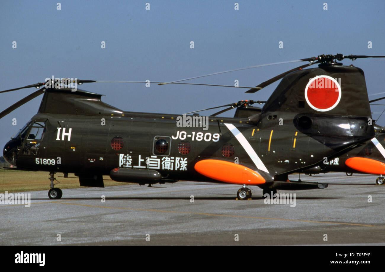 Japanisches Heer JGSDF Kawasaki KV-107 Stock Photo