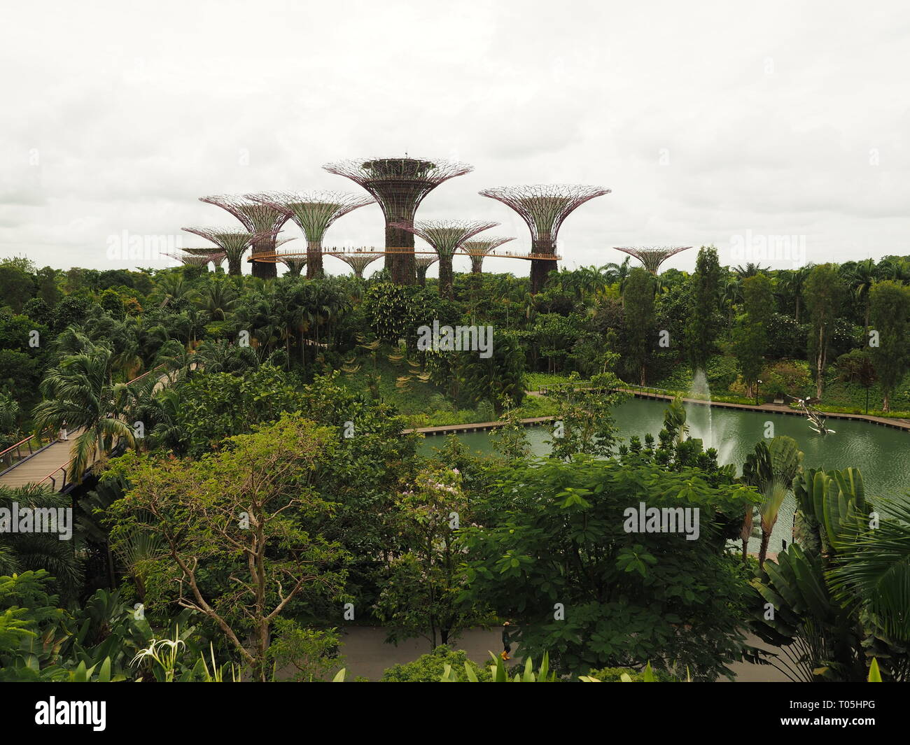 Singapore Gardens by the Bay - by Jana Reutin - Stock Image