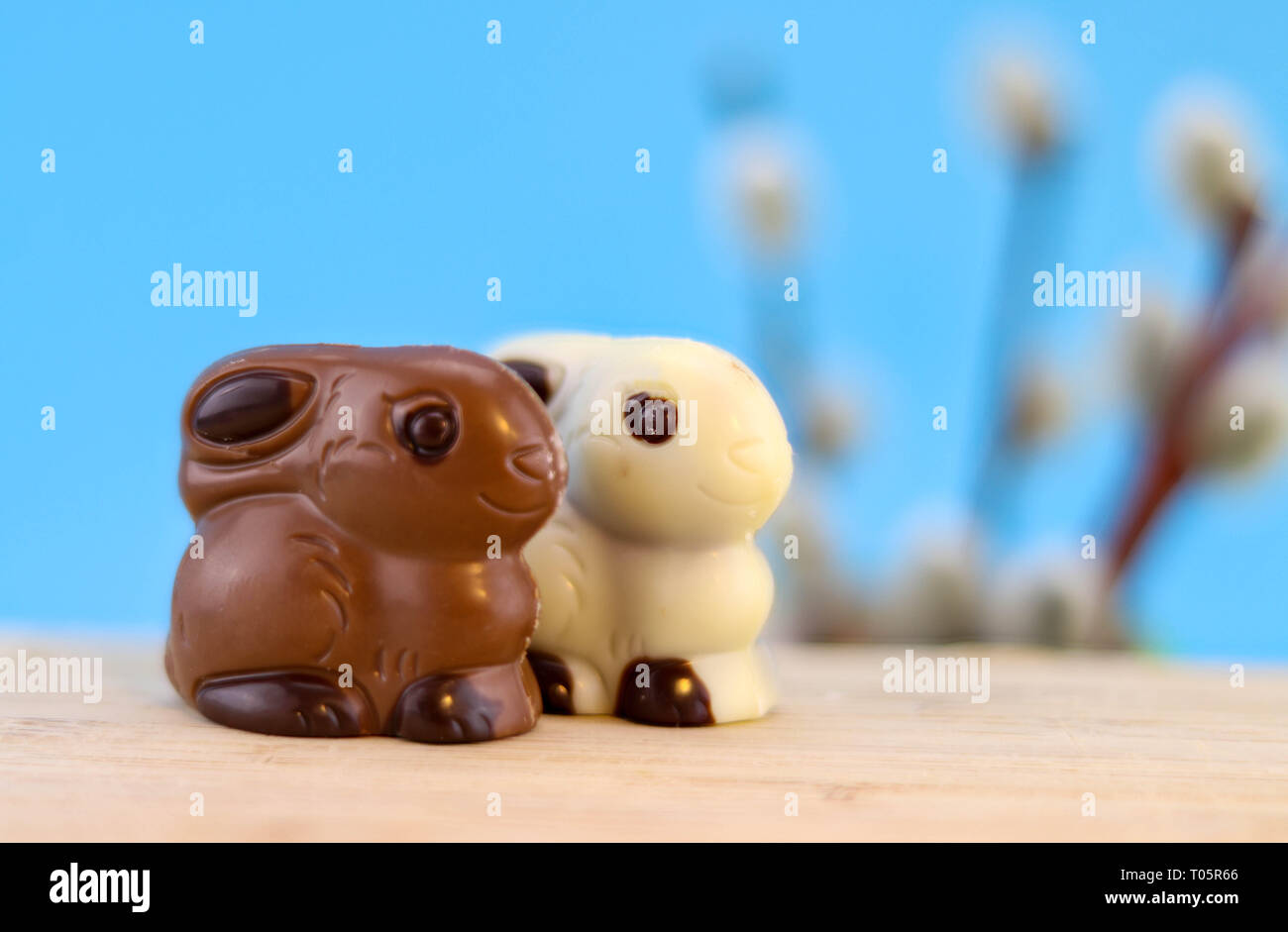chocolate easter bunny couple background with copy space, brown and white Stock Photo