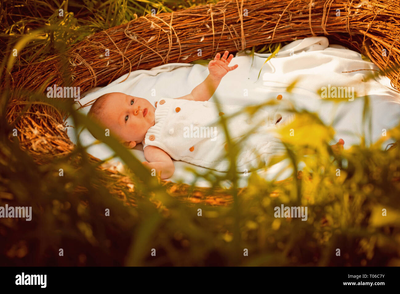 Family psychology. Infant developmentl psychology. Newborn baby in crib. Pediatric care for newborn baby. Family care and health therapy - Stock Image