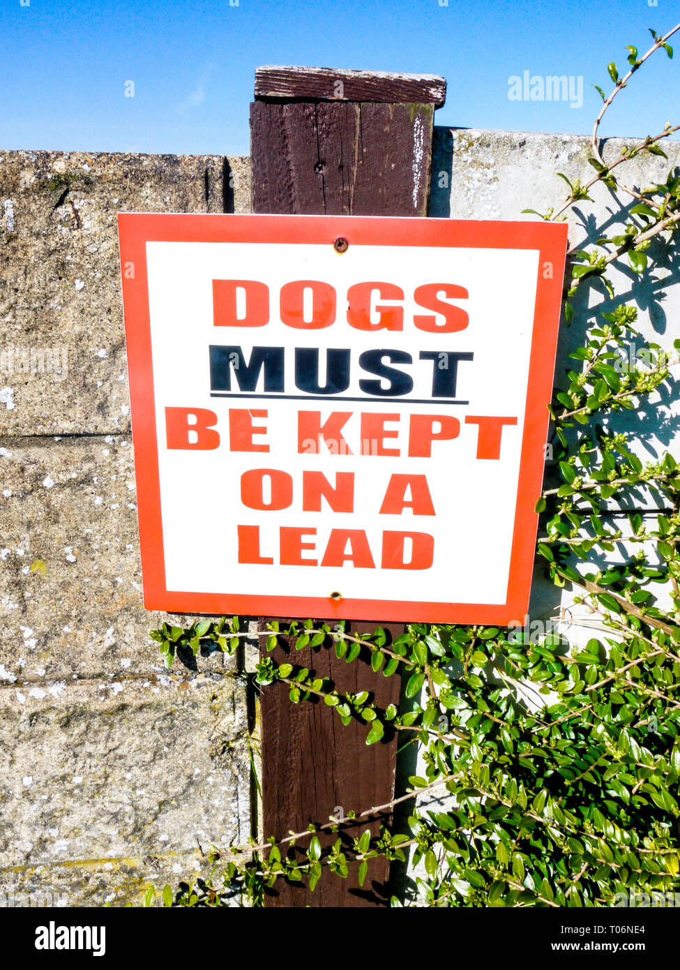 Sign 'Dogs must be kept on a lead' - Stock Image
