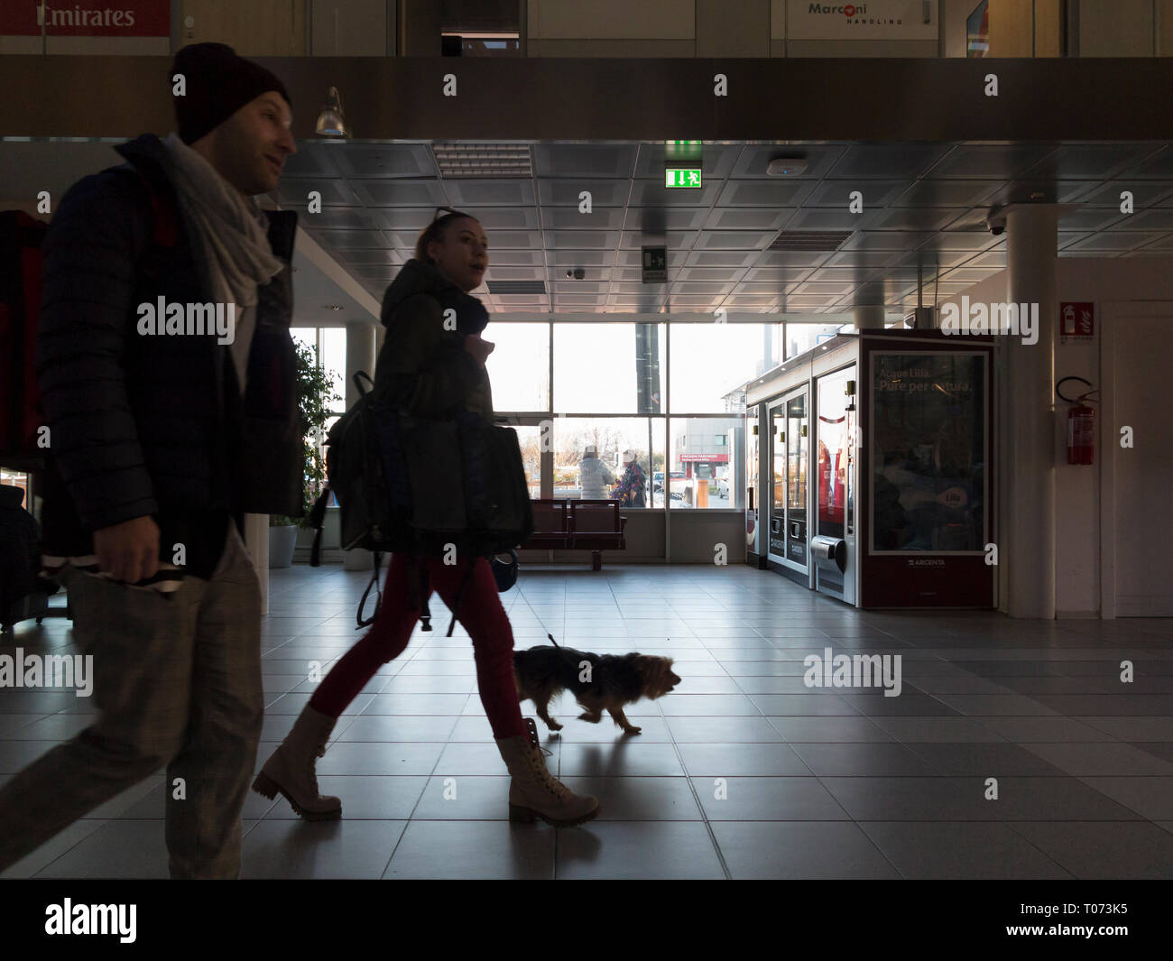 Traveller with pet dog inside an airport, Bologna airport, Italy - Stock Image