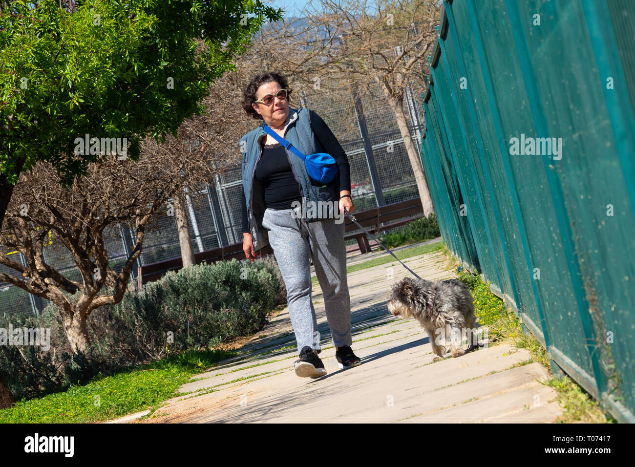 woman walking with her dog - Stock Image