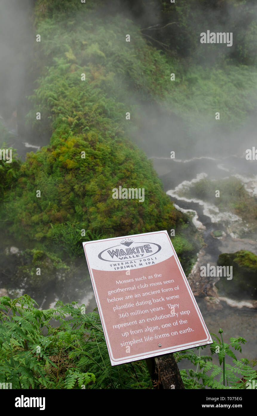 North Valley Dating Springs