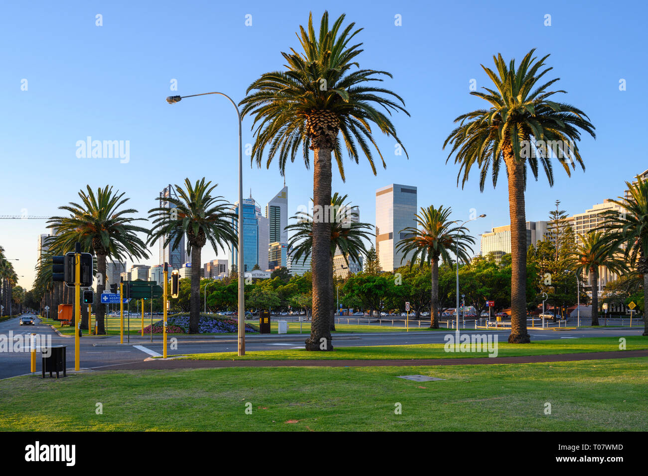 Evening view of Riverside Drive seen from Langley Park, Perth, Western Australia. Stock Photo