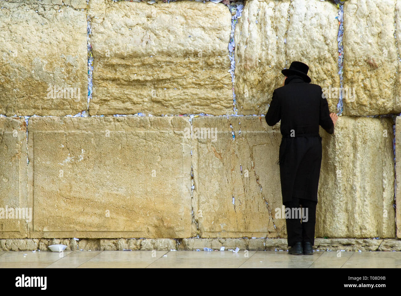 Praying Jew at Western Wall in Jerusalem, rear view - Stock Image