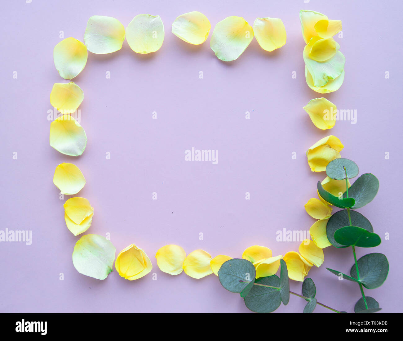 Flower frame with rose petals on pastel pink background. Flat lay, Valentine background. Stock Photo