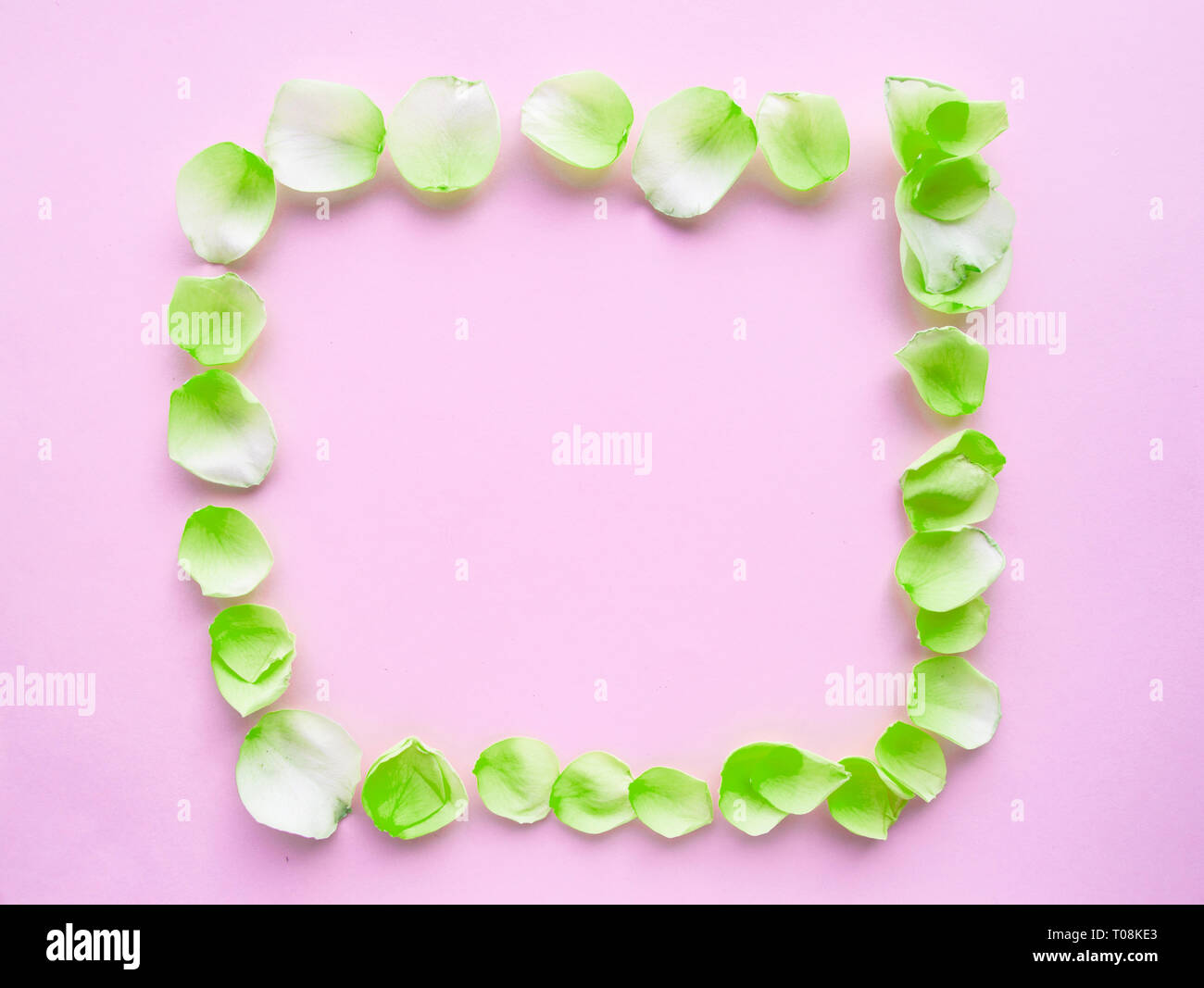 Flower frame with rose petals on pastel pink background. Flat lAY, ROMANTIC background. Stock Photo