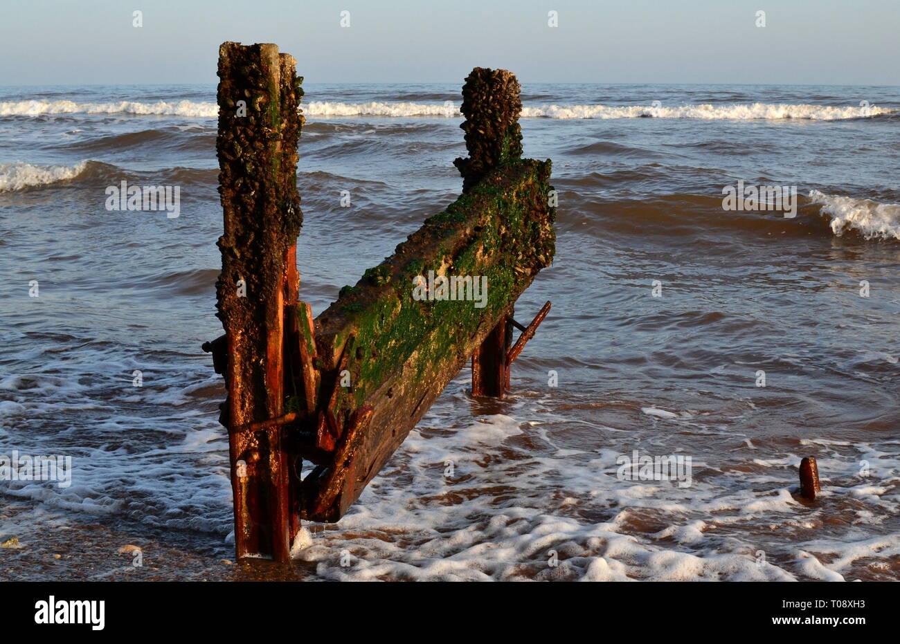 Groyne, Dawlish UK - Stock Image