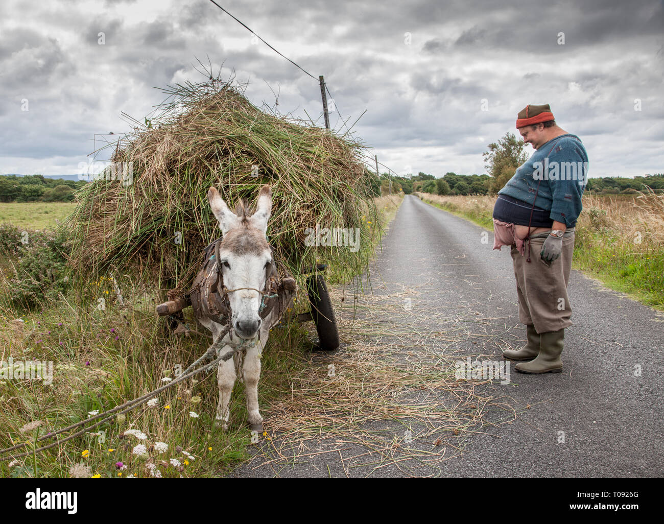 Enniscrone, Sligo, Ireland. 13th August, 2009. A farmer brings home reeds with this Donkey and cart in Enniscrone, Co. Sligo Ireland - Stock Image