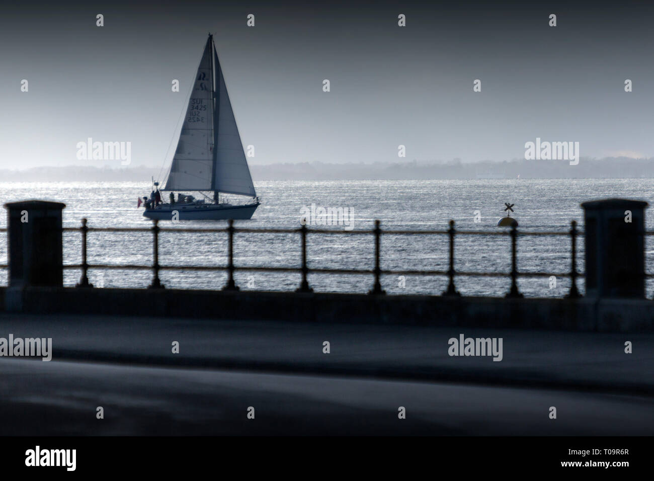Sailing,Yacht,in,Silhouette,afternoon,racing,cruising,seafront,parade,victoris,The Solent,Cowes, Isle of Wight, England,UK, - Stock Image