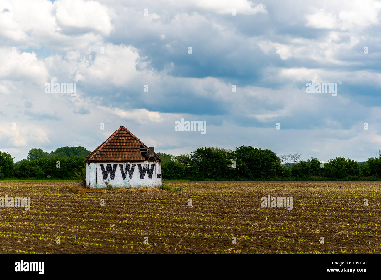 world wide web barn, in the middle of a field - Stock Image