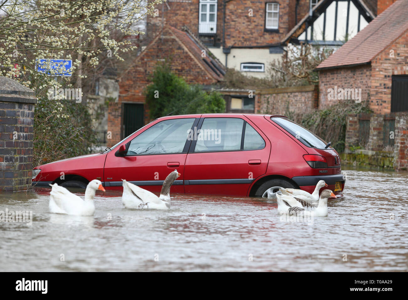 Bridgnorth, Shropshire, UK. 19th March, 2019. A car is stuck in the River Severn floodwater in Bridgnorth town. Peter Lopeman/Alamy Live News - Stock Image