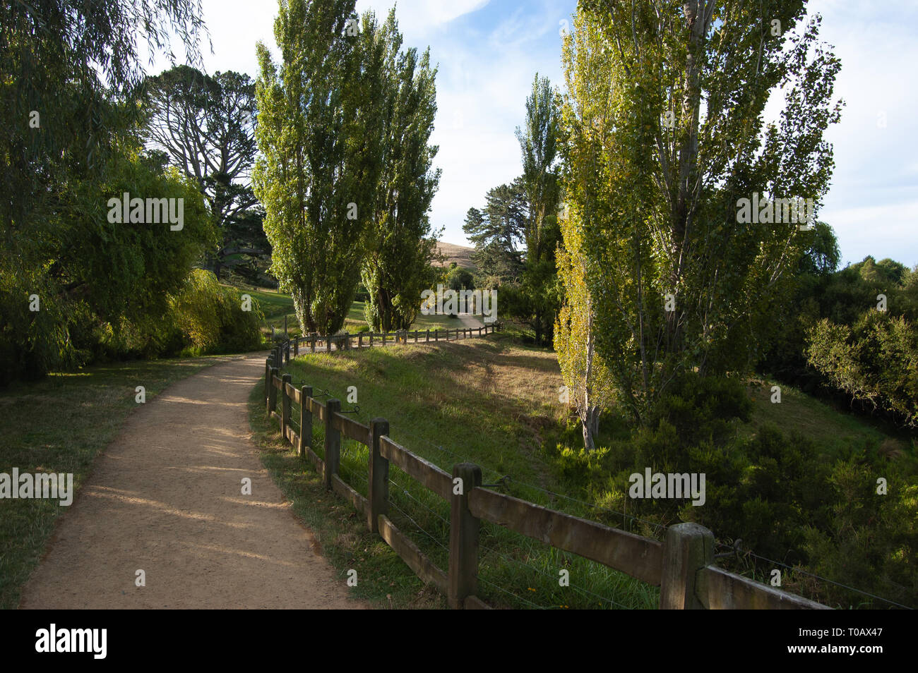 Fence-lined path through New Zealand - Stock Image