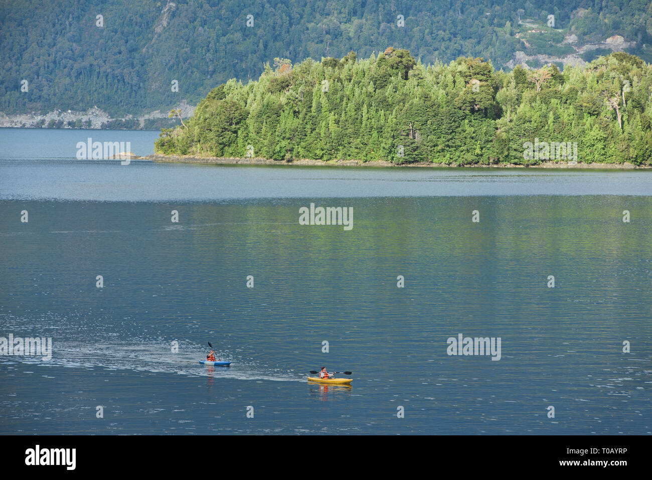 Kayaking the Puyuhuapi fiord in the Ventisquero Sound, Patagonia, Aysen, Chile - Stock Image
