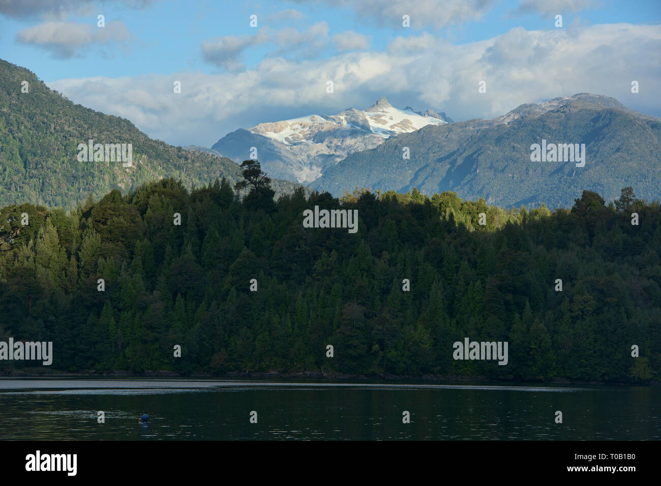 View of Nevado Queulat and Puyuhuapi fiord, Patagonia, Aysen, Chile - Stock Image