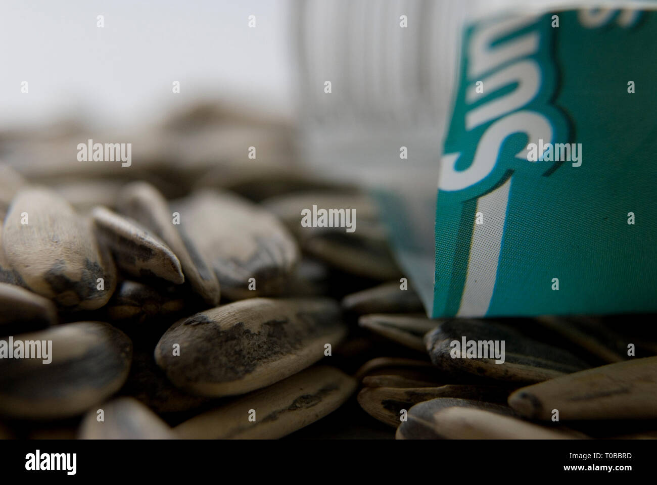 Closeup studio shot shows pile of sunflower seeds with blurred background. - Stock Image