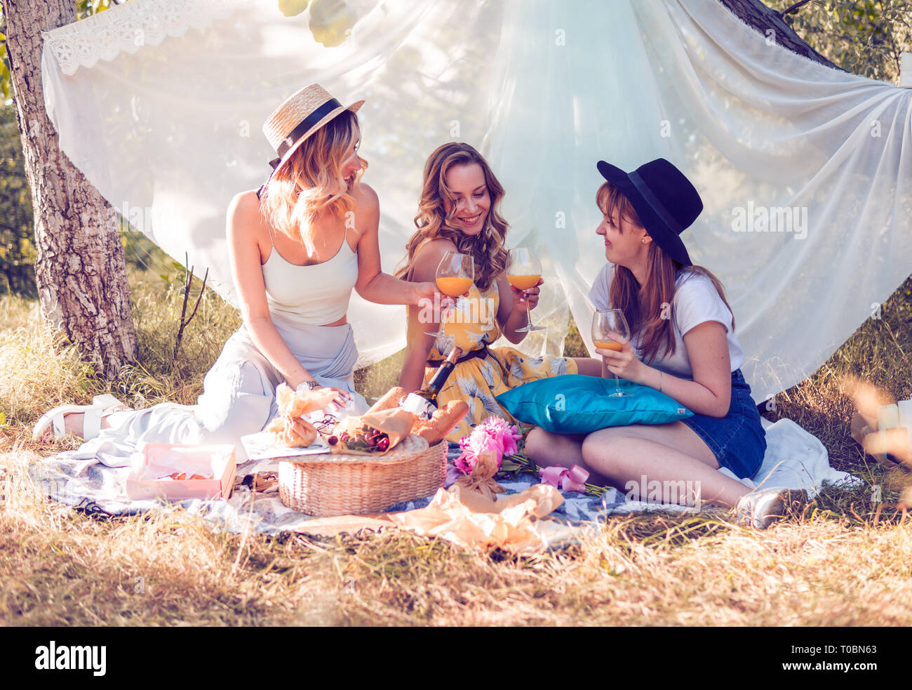 Group of girls friends making picnic outdoor. They have fun Stock Photo